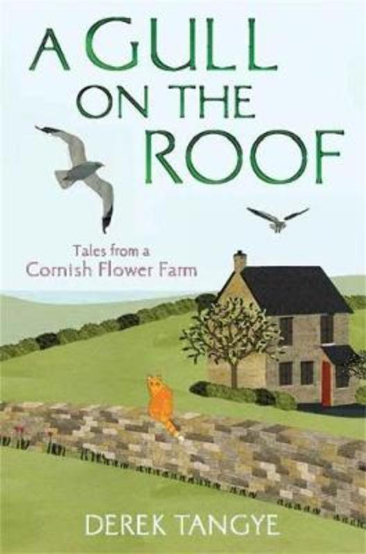 Jacket image for the title 'A gull on the roof