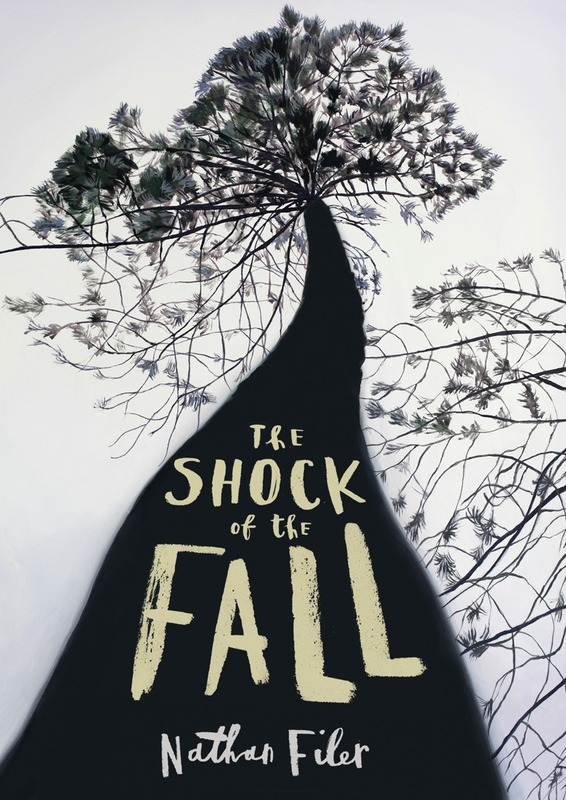 Jacket image for the title 'The shock of the fall'