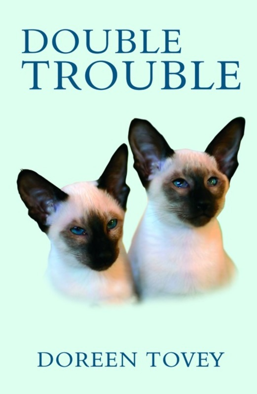 Jacket image for the title 'Double Trouble