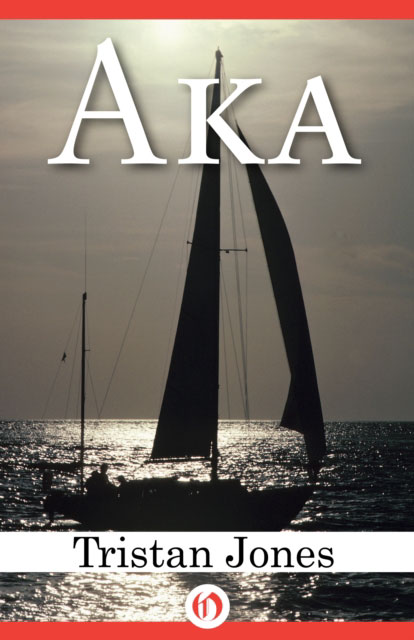 Jacket image for the title 'AKA
