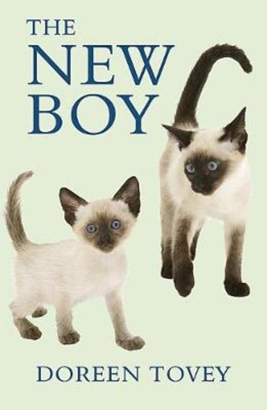 Jacket image for the title 'New Boy