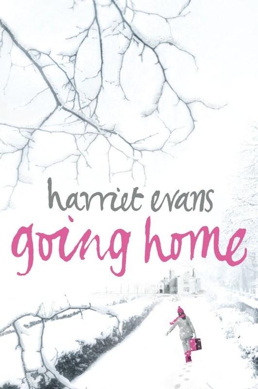 Jacket image for the title 'Going home'