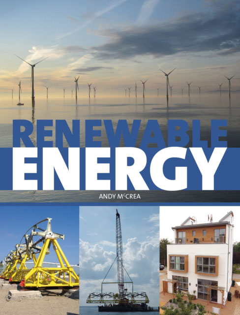 Jacket image for the title 'Renewable energy