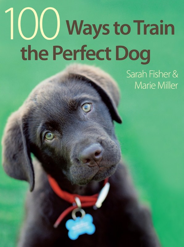Jacket image for the title '100 ways to train the perfect dog
