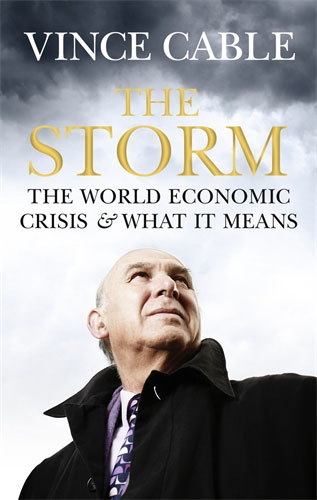 Jacket image for the title 'The storm