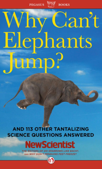 Jacket image for the title 'Why Can't Elephants Jump?'