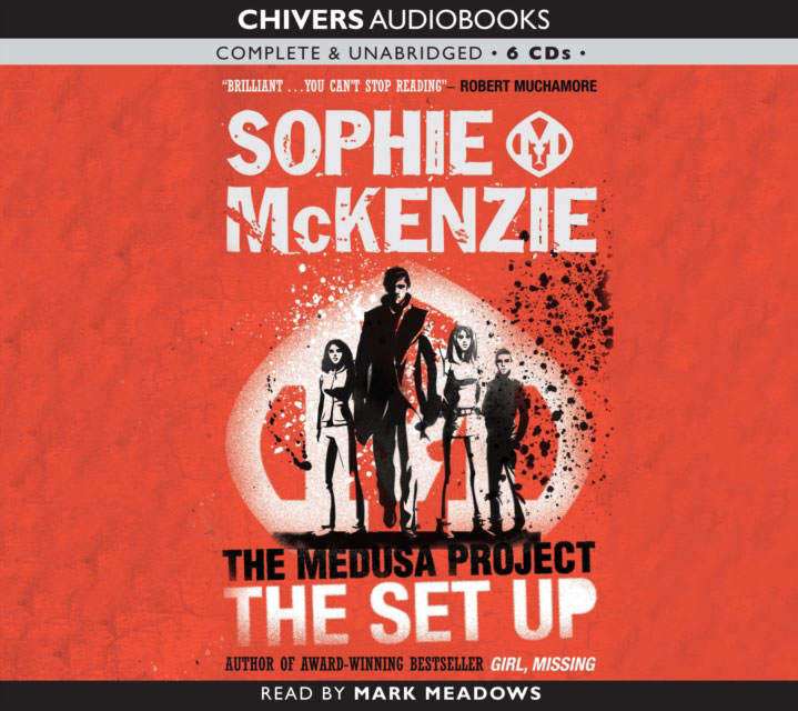 Jacket image for the title 'The set-up [Read by Mark Meadows]