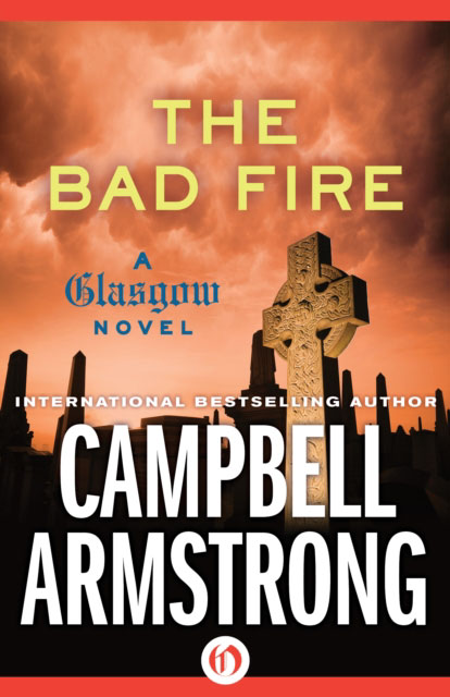 Jacket image for the title 'The bad fire'