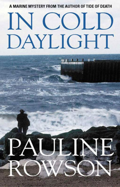 Jacket image for the title 'In cold daylight